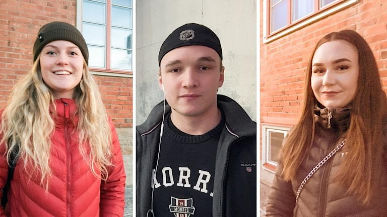 Alkohol Ungdomar Påverkan Wargentinskolan Hannah Dickens Samuel Pettersson Cornelia Vestner Palmqvist3