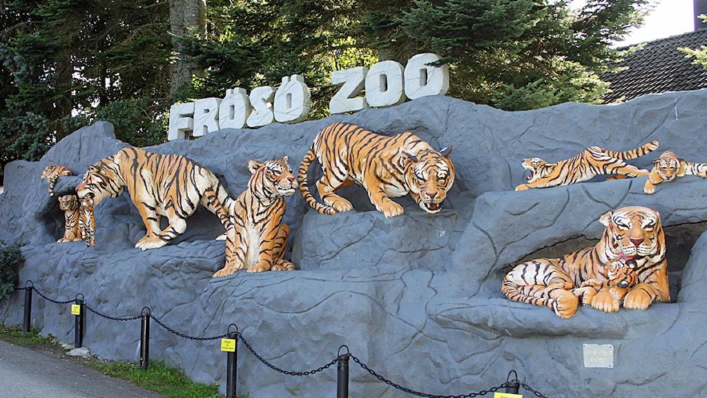 Entrén vid Frösö Zoo. Foto: Jan Mårdberg/Sveriges Radio