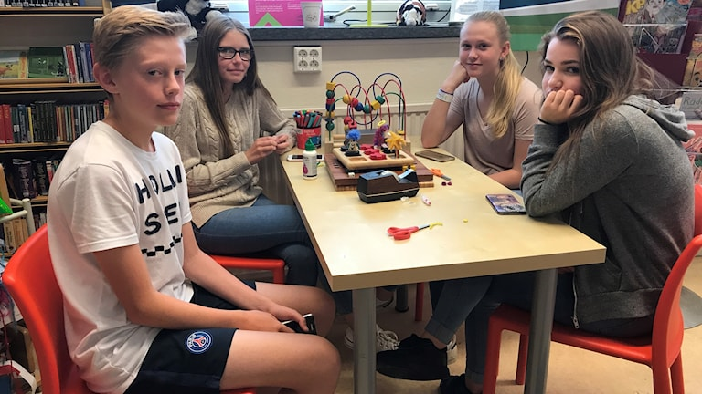 Elias Holgersson, Isabell Andersson, Alva Holgersson och Frida Johansson är scouter i Hammarstrand