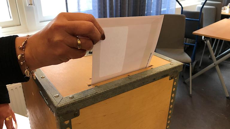 EU-val / Valsedel / Röstning