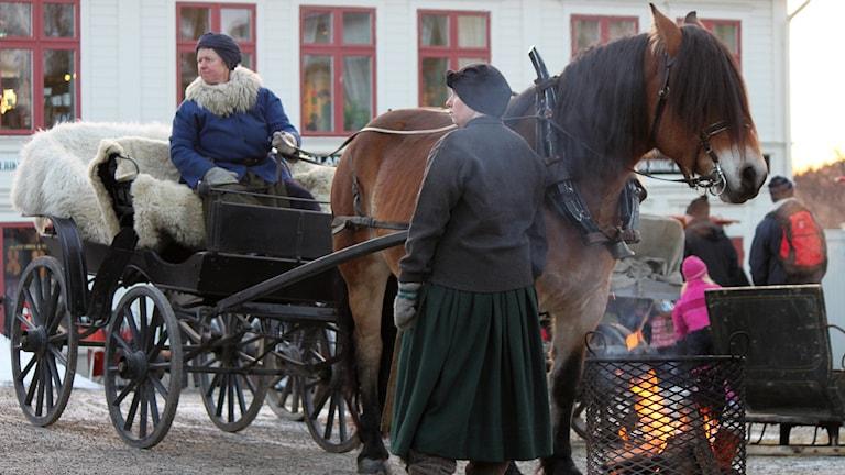 Kvinnor i gammeldags klädsel med häst som drar en vaagn