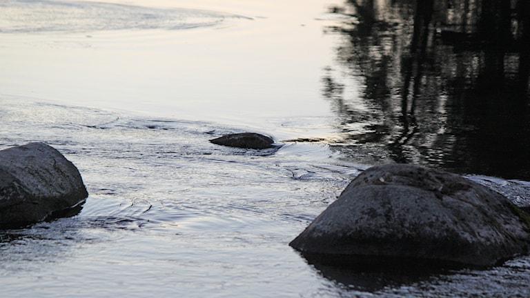 Strömmande vatten med stenar