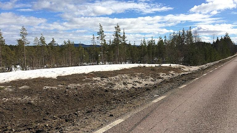 Olycksplatsen vid sidan av vägen efter att bussen har bogserats bort.