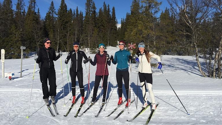 Fem kvinnliga längdskidåkare i strålande sol i fjällmiljö