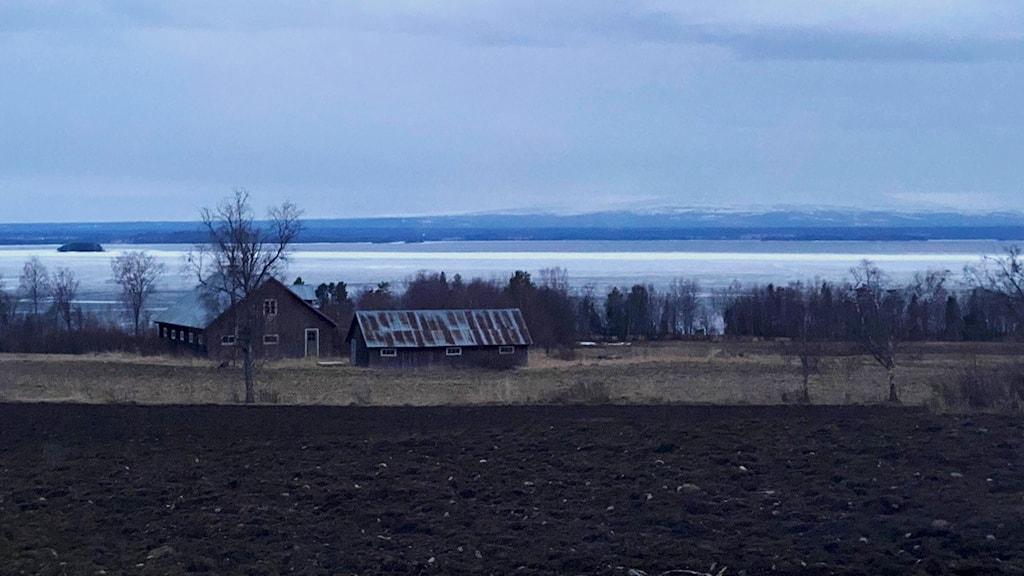 En vy ut över Storsjön där man ser att det är isfritt vatten lite längre ut.