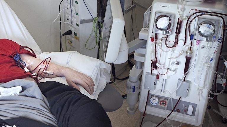 Njursjuk manlig patient får dialys på sjukhus