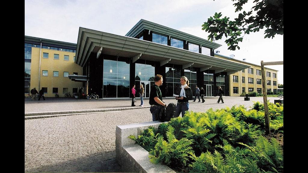 Två personer står framför Mittuniversitetets bibliotek i Östersund.