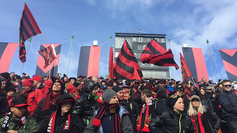Full läktare med fans i svartröda färger och flaggor