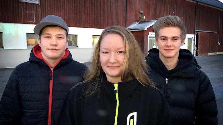 Hjalmar Sjöberg, Deborah Evaldsson och Pär Lindström. Elever på Torsta Naturbruksgymnasium.