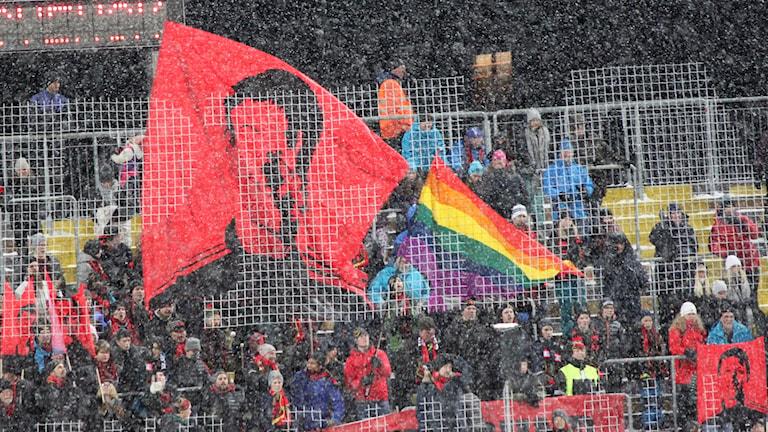 Supportrar på ståplatsläktare Jämtkraft Arena i snöfall