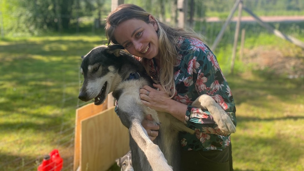 en kvinna i blommig klänning med lång ljusbrunt och blont hår som kramar om en hund av rasen siberian huskey