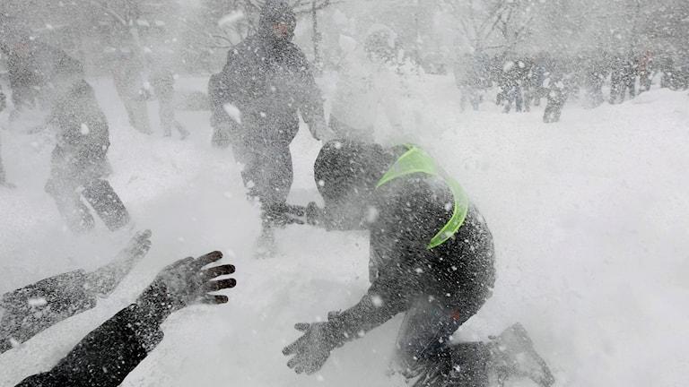 Snöbollskrig.