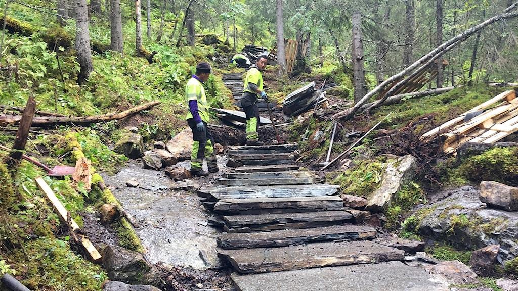 Sherpas gör stentrappor längs vandringsled
