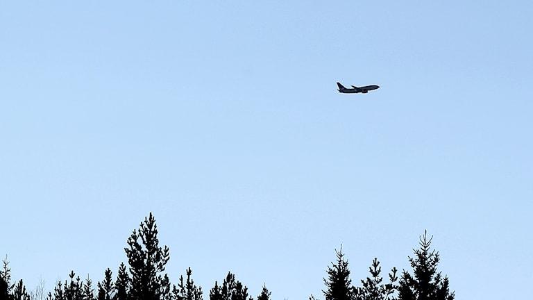 Ett SAS-flygplan som lyfter från Frösön