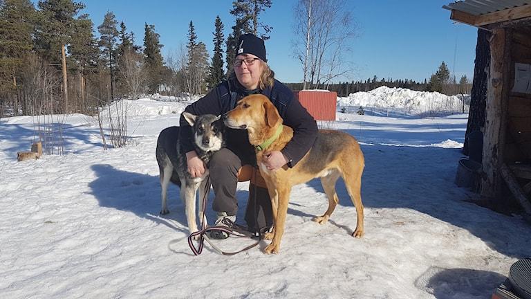 Kvinna står på huk tillsammans med två hundar i snöig skogsmiljö.