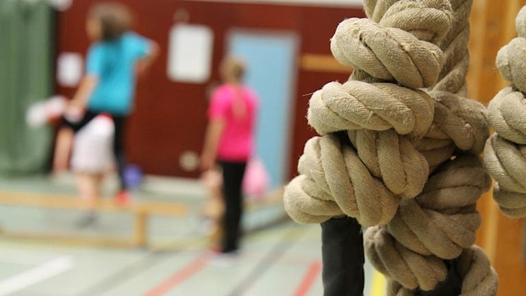 Gymnastiksal med elever