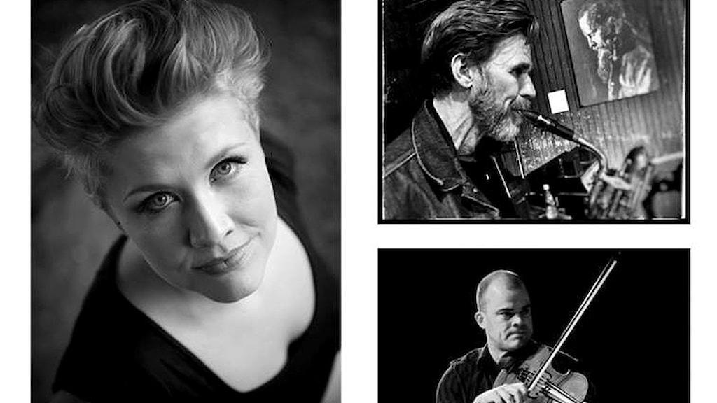 Musikgruppen Katarina Hallberg Trio