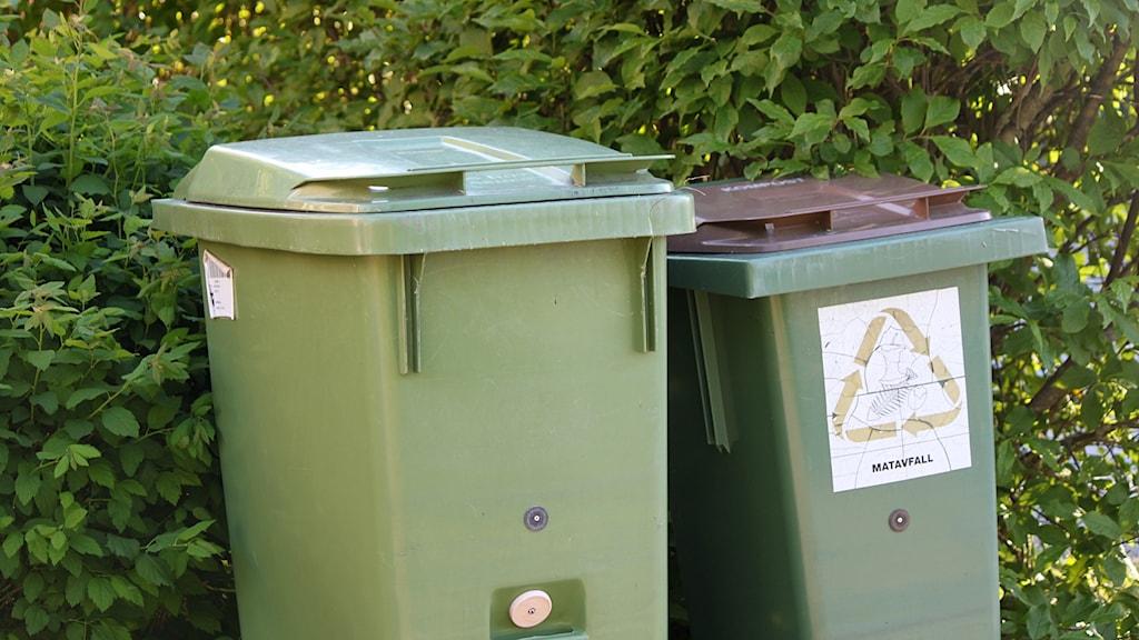 Soptunna och komposttunna