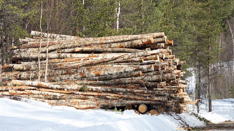 En trave med stockar av björktimmer vid grusväg vintertid