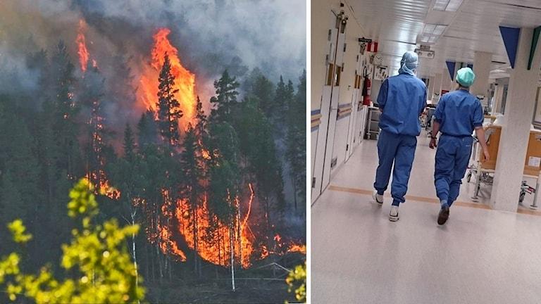 En dubbelbild med skogsbrand och sjukvårdpersonal.