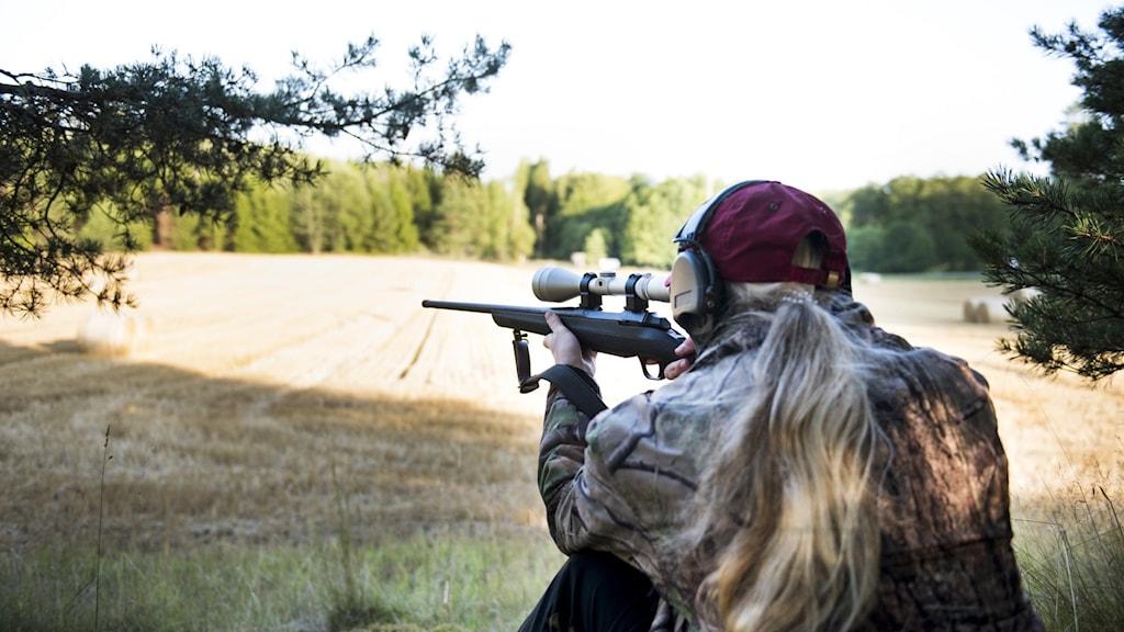 jägare med vapen i anläggning, siktar, sittande