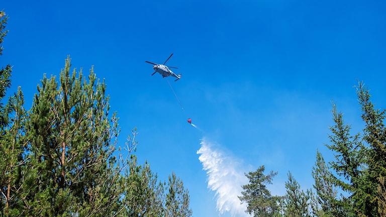 OSKARSHAMN 20180702   En skogsbrand rasar nordväst om Mellingerum utanför Oskarshamn. Flera räddningstjänster från länet och hemvärnet deltar i släckningsarbetet. Här vattenbombas området med hjälp av helikopter. Foto: Suvad Mrkonjic / TT