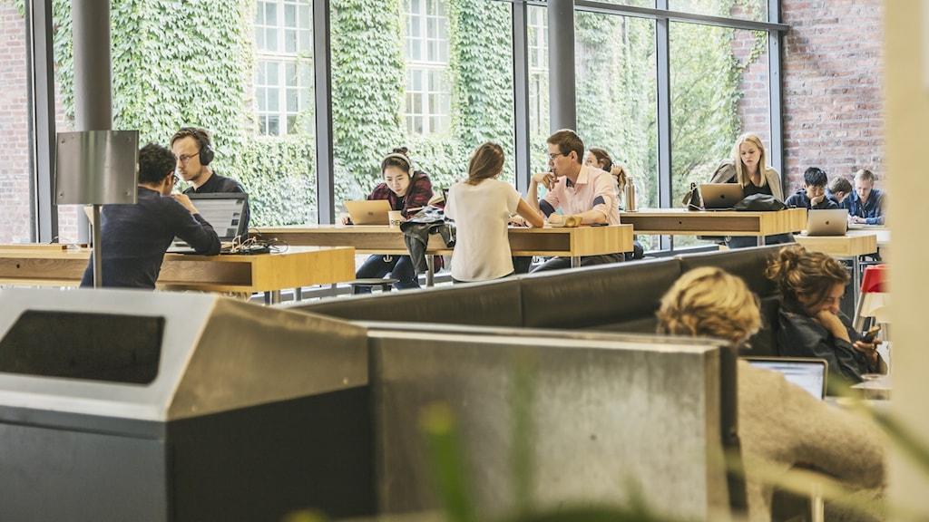 Studenter som sitter och pluggar på Kungliga Tekniska Högskolan, KTH