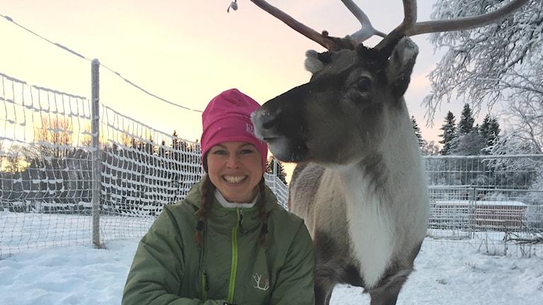 Rentränare Ulrika Andreasson tillsammans med renen Rudolf, Rentricktränare, Ullis och Rudolf