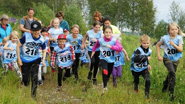 Barn med nummerlappar springer i högt gräs i naturskön omgivning med lövträd