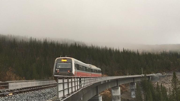 Tåg på bro i dimma