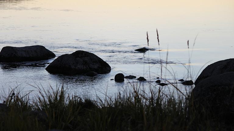 Strandkant vid strömmande vatten med stenar i kvällsljus