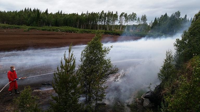 Brandman släcker skogsbrand