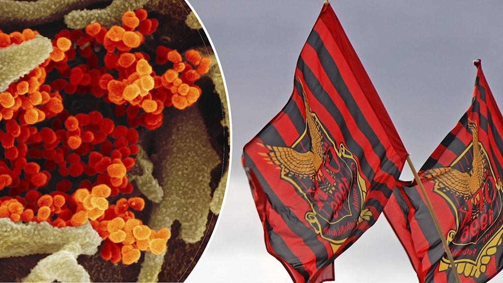 ÖFK-flagga och covidbakterier