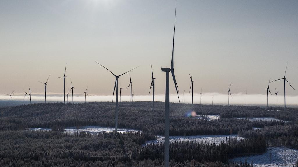 Vindkraftverk på rad.