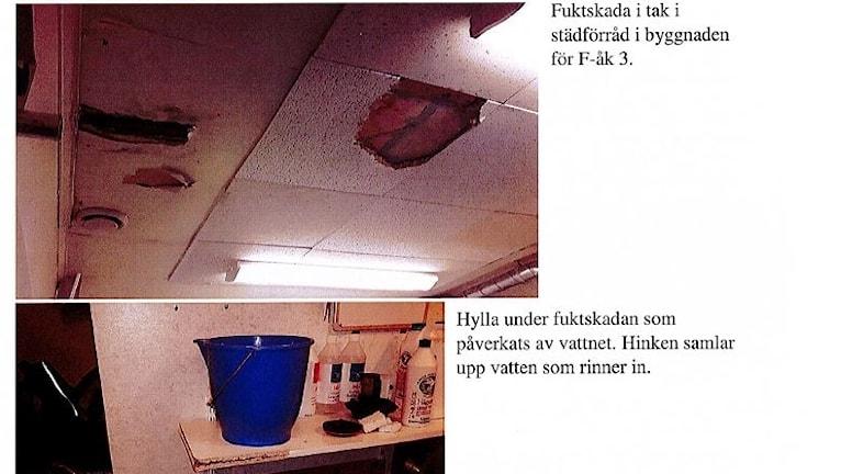 Fuktskador Sveg skola.