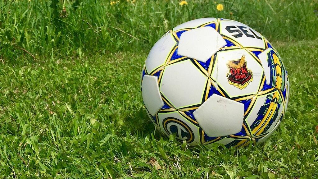 Fotboll på grön gräsmatta