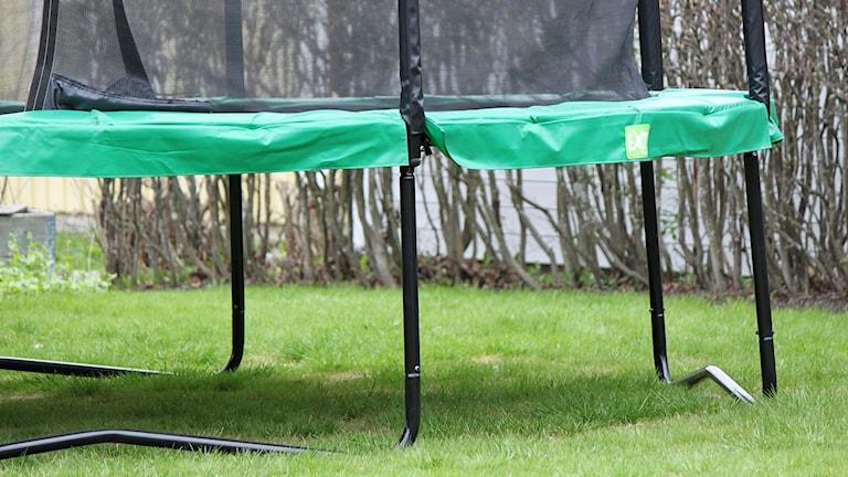 Studsmatta i villaträdgård