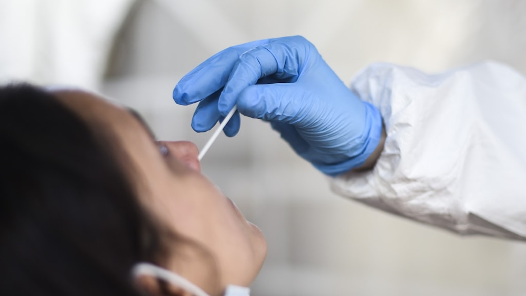 Person testar en annan person med pinne i näsan för covid-19.