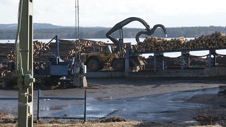 Timmerupplag och arbetsfordon på sågverksområde