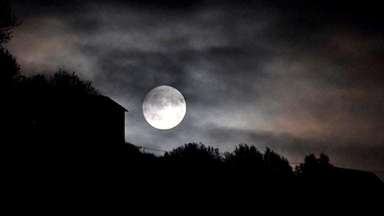 Månsken över landsbygd med siluett av byggnad