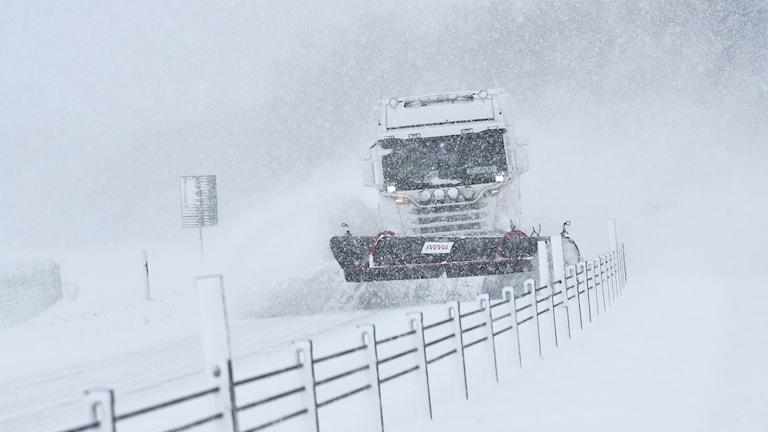 KALMAR 20180228  En plogbil röjer undan snö på E22:an strax utanför Kalmar  under onsdagens snöoväder.  Foto: Johan Nilsson / TT / Kod 50090