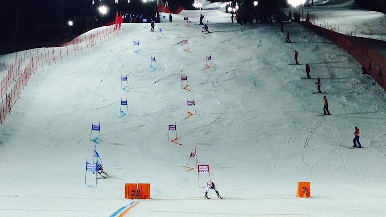 Två slalomkare möts i parallelltävling