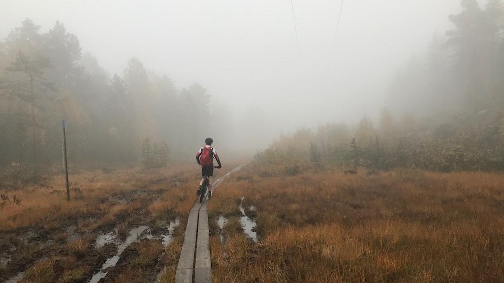 En cyklist i svart vita kläder och röd ryggsäck står på en spång som går över en myr. Omgiven av dimma.