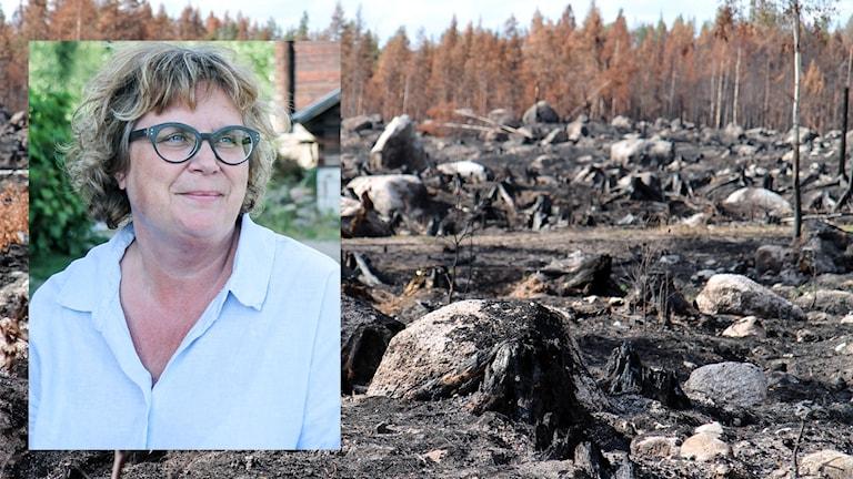 Gabriella Persson Turdell Huskölen brandområde Ljusnan Härjedalens kommun Skogsbränderna i Jämtland 2018