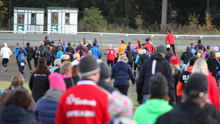 Löpartävling på travbana