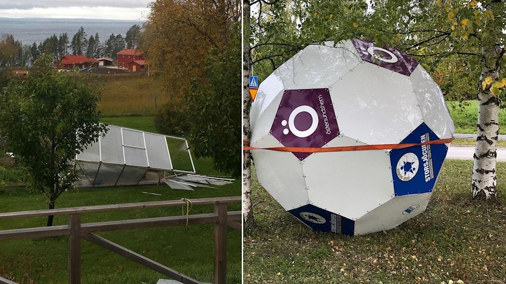 Ett växthus som blåst sönder och en stor fotboll som surrats fast vid ett träd. Foto: Jan Rundquist/Läsarbild och Pernilla Anth Jacobsson/Sveriges Radio