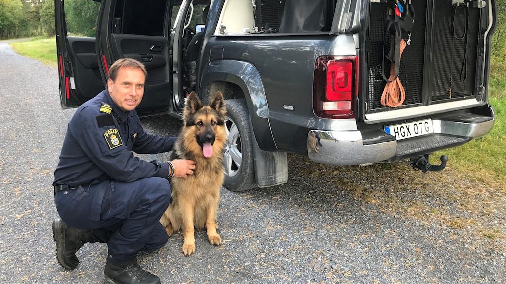En polis, en schäferhund och en pick-up bil.
