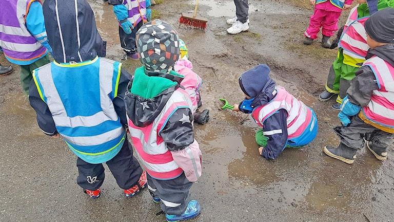 Barn, Barnomsorg, Förskola