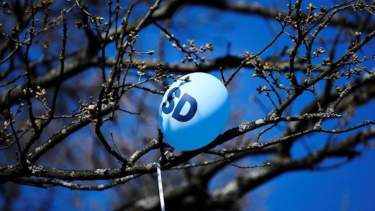 SD-ballong