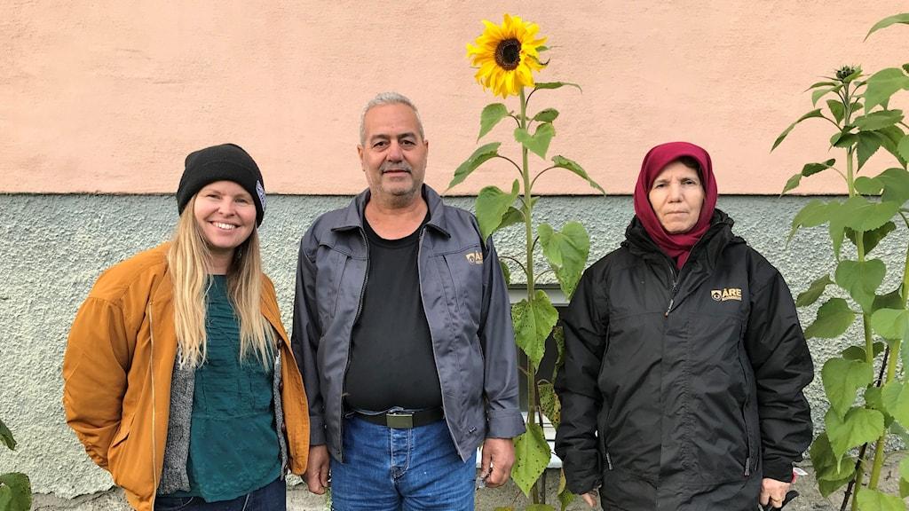 En man och två kvinnor står vid solrosor som blommar framför en husvägg